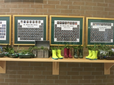 Promotes growth: eco club rainboot plantings